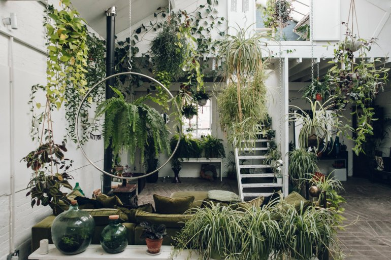 Clapton+Tram+-+a+plant-filled+warehouse+space+in+London